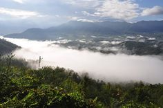 A morning mist covering The Smoky Mountains.