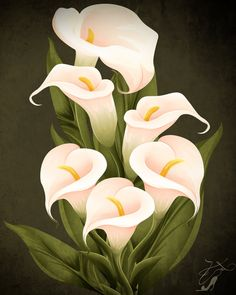 paintings of callalily - Norton Safe Search