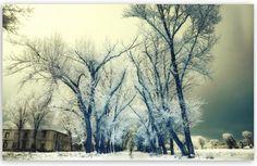 Αν γραφτείτε στη σελίδα Facebook του Diploma Line θα απολαμβάνετε όμορφες φωτογραφίες εκτός των άλλων!