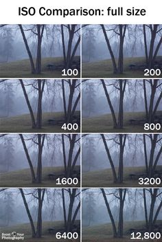 ISO Basics: full size comparison | Boost Your Photography