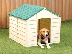 Durable Plastic Outdoor Pet Shelter ! Get yours here ➩➩       http://amzn.to/2pVuO6Z