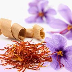 Natures Garden's Saffron & Cedar fragrance oil: A wonderful arrangement of fresh-cut cedar trees surrounded by saffron spice, violet, and geranium; all sitting on base notes of vetiver and warm musk. Best Shaving Soap, Wholesale Fragrance Oils, Room Scents, Candle Making Supplies, Best Fragrances, Perfume, Candlemaking, Soaps, Discount Toms