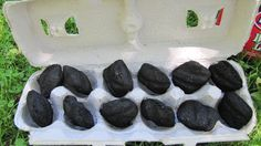 Ignite a Cardboard Egg Carton with Charcoal Inside for an Easy Start