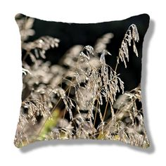 Throw Pillow — Meadow Grass / Graceful Stems of Wild Meadow Grass / Feathery - Rustic - Bokeh by PhotoClique on Etsy