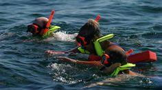 Caribbean Queen Snorkel Tour (N04)