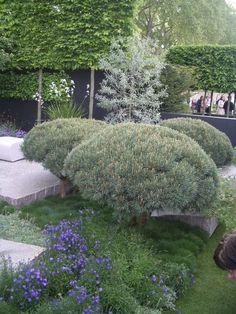 Ulf Nordfjell, Telegraph Garden, Chelsea 2009
