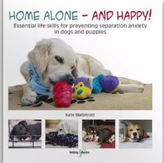 FREE [PDF] Home alone and happy Essential life skills for preventing separation anxiety in dogs and puppies Free Epub/MOBI/EBooks Dog Separation Anxiety, Dog Anxiety, Anxiety Help, Home Alone, Old Dogs, Family Dogs, Quality Time, Life Skills, Dog Training