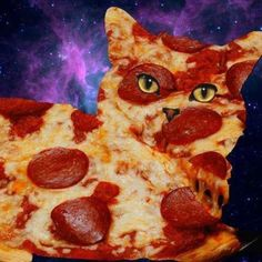 Pizza cat? You can get a little high or a lot high, anytime and anyplace by making your own delicious Dragon Teeth mints or Cannabis chocolates; small candies you can take anywhere. MARIJUANA - Guide to Buying, Growing, Harvesting, and Making Medical Marijuana Oil and Delicious Candies to Treat Pain and Ailments by Mary Bendis, Second Edition. Just $2.99 for great e-book! www.muzzymemo.com