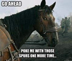 Go ahead; Poke with those spurs one more time...Horse training humor