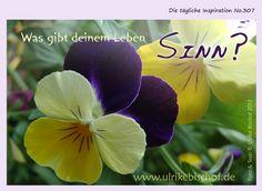 Die tägliche Inspiration No.307 www.inspirationenblog.wordpress.com www.ulrikebischof.de