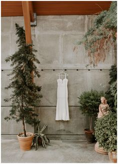 The bride's dress hanging in a botanical garden. PHOTOGRAPHY BY SCARLET ROOTS. Edgy Wedding, Boho Wedding Dress, Rustic Wedding Inspiration, Wedding Photography Inspiration, Boston Wedding Venues, Photo Booth Backdrop, Wedding Dresses Photos, Pampas Grass, Bridal Accessories