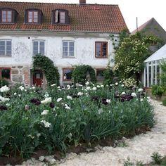 Mandelmanns trädgårdar, Mandelmanns Trädgårdar Black Garden, Green Garden, Garden Pots, Vegetable Garden, Balcony Gardening, Painting The Roses Red, Green Rooms, Garden Inspiration, Curb Appeal
