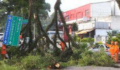 Galdino Saquarema Noticia: Chuva forte causa transtornos e prejuízos em SP