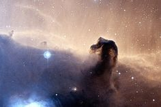 The Horsehead Nebula, located approximately 1,300 to 1,500 lightyears from Earth in the constellation of Orion, is making buzz in the space news circuit after researchers at the Institute for Millimetric Radio Astronomy detected an unusually dense presence of hydrocarbon molecule C3H+—one of the smallest molecules that compose petroleum and natural gas—estimated to be 200 times more than the total amount of water on Earth.
