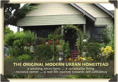 Modern Urban Homestead