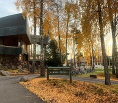 So lucky to have another beautiful autumn day in Finland 🇫🇮 🍁 ☀️ via Autumn Day, Helsinki, Finland, Photo And Video, Plants, Travel, Beautiful, Instagram, Viajes
