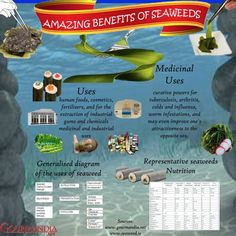 Amazing Benefits of Seaweeds Infographic