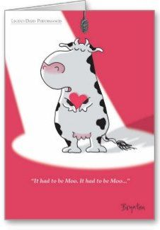 "LOVE this Sandra Boynton cow-themed Valentine's Day card. Reads, ""It Had to be Moo, It Had to be Moo..."" Click on the card to see what it says inside the card or to buy the card from the artist on Zazzle for $3.15. #valentines #cows #bovine #sandraboynton"