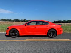 12 Things We LOVE About the Dodge Charger R/T Scat Pack — Auto Trends Magazine Charger Srt Hellcat, Dodge Charger Srt, Alpine Audio, Full Size Sedan, Toyota Avalon, Trends Magazine, Brake Calipers, Aluminum Wheels, Google Search