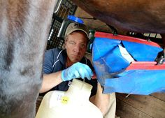 """Mike Rowe: """"Poo is the glue that holds us together."""" Dirty Jobs Episode: Horse Tester"""