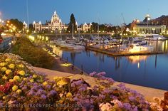 Picture of Photo of the evening lights of the waterfront in downtown Victoria on Vancouver Island, British Columbia, Canada.