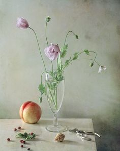 #Still #Life #Photography ***© Altere