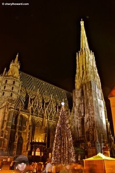 Stephansdom, Vienna, Austria - one of the best Christmas markets I've seen :)
