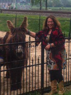 I love donkeys! X