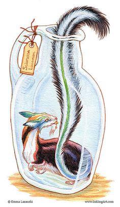 Bottled: Colorful Critter | Flickr - Photo Sharing!