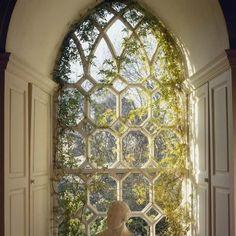 Beautiful window