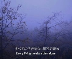 Japanese Quotes                                                                                                                                                                                 More