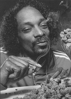 Snoop Lion (still feels so weird, but oddly cuddly!)