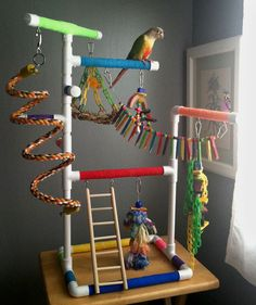 RAINBOW Medium Tabletop & Cagetop PVC Bird Gym Play Stand with Ladder & Perches