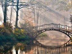 Autumn Landscape Canvas Print Wall Art Painting for Home Decor,Tranquil Autumn Forest with River and Bridge on The Sunny Morning Paintings Modern Framed Artwork Beautiful World, Beautiful Places, Beautiful Pictures, Wonderful Places, Beautiful Person, Beautiful Scenery, Simply Beautiful, Amazing Places, Header Photo