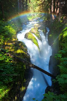 Sol Duc Falls in Olympic National Park, Washington