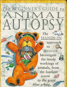 An instructional guide for strange small children with a bizarre wish to hack up their teddy bears...and blue whales(?!)