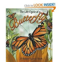 The life cycle of a butterfly - Bobbie Kalman