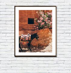 Donkey Print/Digital Donkey/Poster/Kids Donkey Printable/Boho/Animal Poster/Donkey Photo/Instant Download/Donkey Wall Art/Nursery Donkey Art As You Like, Just In Case, Frame Download, Animal Posters, International Paper Sizes, Etsy App, Donkey, Nursery Wall Art, Beach Trip
