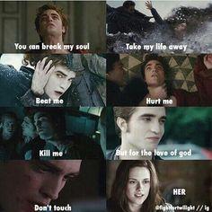 This is how my boyfriend acts Twilight Saga Quotes, Twilight Jokes, Twilight Saga Series, Twilight New Moon, Twilight Pictures, Twilight Series, Twilight Movie, Twilight Quiz, Bella Swan