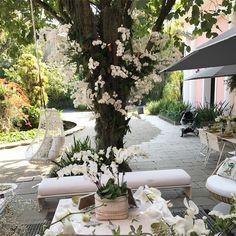 Quem não ama pendurar orquídeas no tronco de uma árvore. Da um charme todo especial ao jardim.  Projeto @bebelniemeyer e Maria Pia Marcondes Ferraz #orquideas #jardim #flores #exteriordesign #olioliteam @olioli_lifestyle