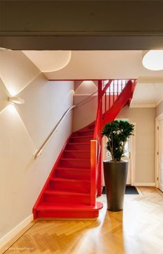 entree, hal, trappenhuis, verlichting, design, interieurarchitectuur, ontwerp, kleur, planten, bepla