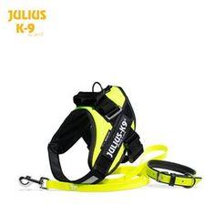 Julius-K9 main store. IDC-harness 0 + Lumino leash 1,2 m (3.9 feet) + Lumino collar 50