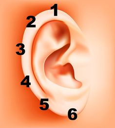 How to Apply Reflexology to the Ears. Ear reflexology is not as well-known as foot or hand reflexology, but can relieve stress and pain. Application of ear reflexology is fast and easy. You massage pressure points on the ear to treat aches. Health And Nutrition, Health Tips, Health And Wellness, Health Fitness, Health Benefits, Acupuncture, Ear Reflexology, Bra Hacks, Fitness Workouts