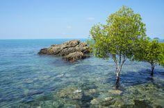 Baylan-Beach-Koh-Chang