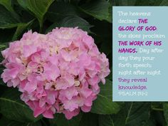 The Glory of God, it