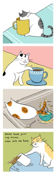 貓小姐的光陰筆記 - udn部落格 Never leave your cup alone, when cats are home....