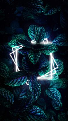 Nature Neon Green Foliage - IPhone Wallpapers