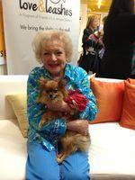 Betty White.....#BlogPaws celebrates #senior #pets