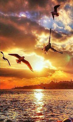 Breath taking scenery. Beautiful World, Beautiful Places, Beautiful Pictures, Amazing Sunsets, Amazing Nature, Sunset Photography, Landscape Photography, Image Nature, Beautiful Sunrise