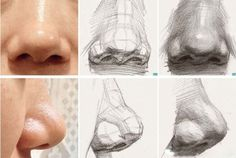 Noses drawing reference and noses drawing tutorial Drawing Heads, Nose Drawing, Painting & Drawing, Human Anatomy Drawing, Anatomy Art, Drawing Lessons, Drawing Techniques, Drawing Tips, Pencil Art Drawings